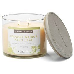 Candle-lite Essential Elements 3-Wick Scented Candle Glass Jar 14.75 oz 418 g - Coconut Water & Palm Leaf