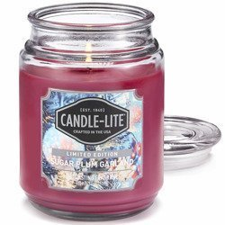 Candle-lite Everyday Collection Large Scented Jar Glass Candle 18 oz 145/100 mm 510 g ~ 110 h - Sugar Plum Garland
