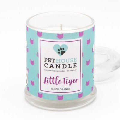 PetHouse Candle scented soy candle odor eliminating - Little Tiger Blood Orange