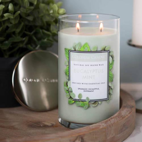 Colonial Candle большая, ароматная соевая свеча в стакане для стакана 18 унций 510 г - Eucalyptus Mint
