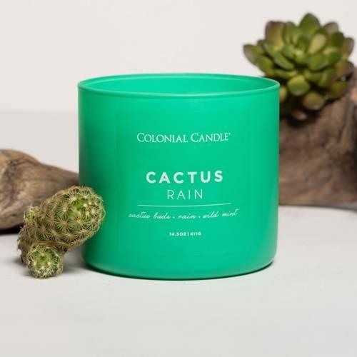 Colonial Candle Pop Of Color sojowa świeca zapachowa w szkle 3 knoty 14.5 oz 411 g - Cactus Rain